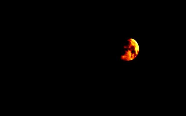 luna di claudio arezzo di trifiletti