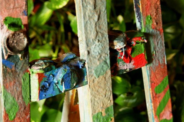 art for peace - arte per la pace