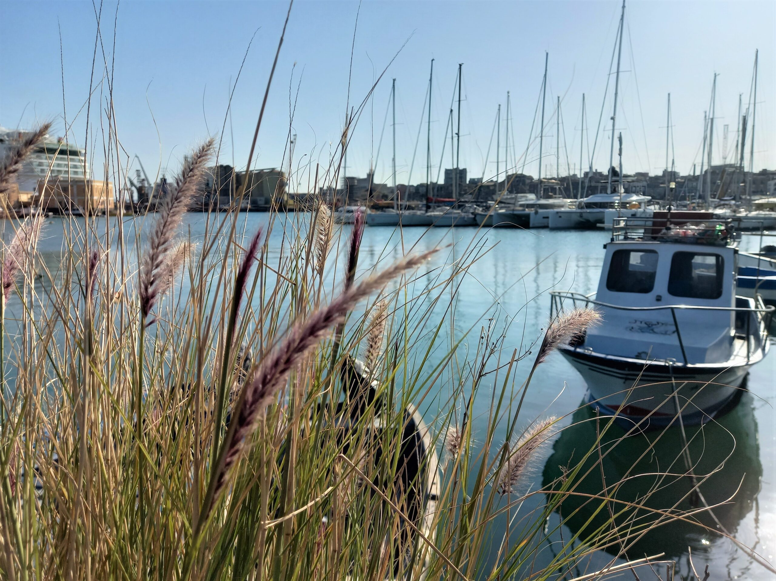 porto catania sicily needs love